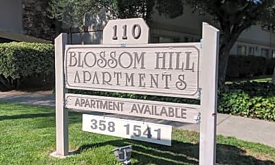 Blossom Hill Terrace, 1