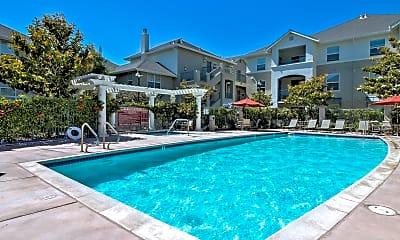 Pool, Catalina Luxury Apartments, 0