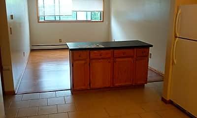 Kitchen, 976 S Robert St, 1
