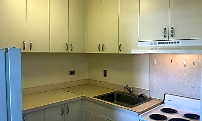Kitchen, 1125 Young St, 1