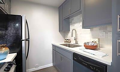 Kitchen, Novo, 1