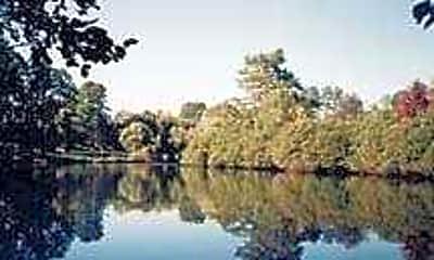 Lake Mist, 1