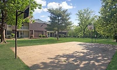 Basketball Court, Chestnut II, 2