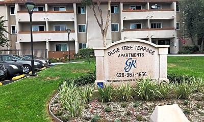 Olive Tree Terrace, 1