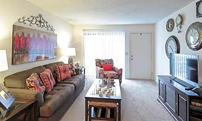 Living Room, Silver Springs Apartment, 1