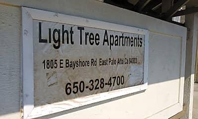 Light Tree, 1