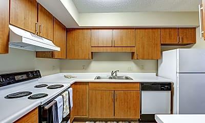 Kitchen, The Fountains Apartments, 1