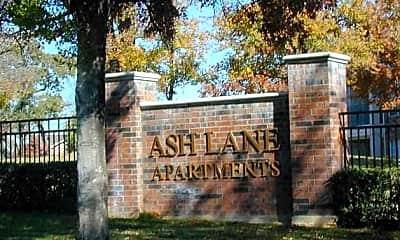 Ash Lane, 1