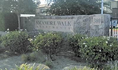 Sycamore Walk, 1