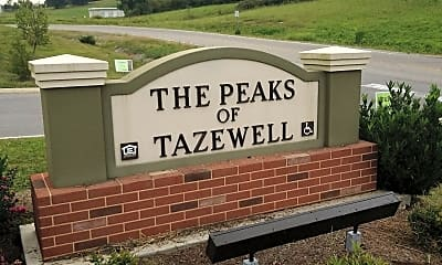 The Peaks of Tazewell, 1
