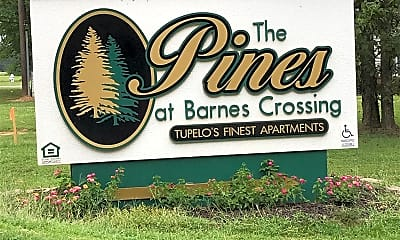 The Pines At Barnes Crossing, 1