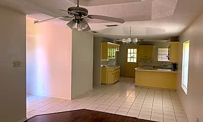Living Room, Encarnasion, 1