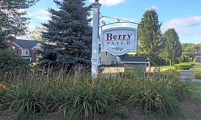 Berry Patch, 1