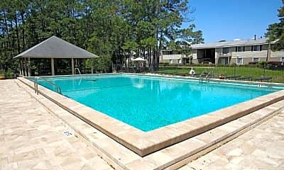 Pool, Turtle Lake, 0