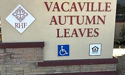 Vacaville Autumn Leaves, 1