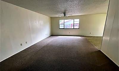 Living Room, 1009 Ellendale Dr, 1