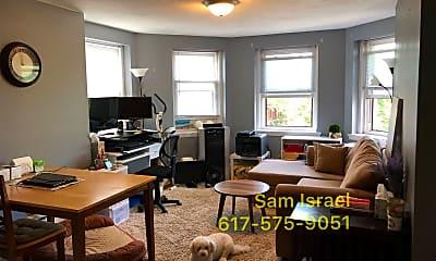 Living Room, 132 St Marys St, 1