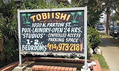 Tobi Ishi, 1