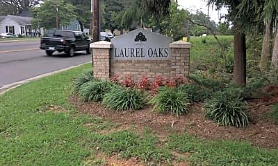 Laurel Oaks, 1