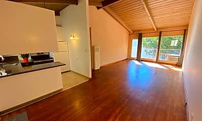 Living Room, 1248 Alpine Rd, 1