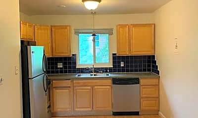 Kitchen, 317 Remington St, 0