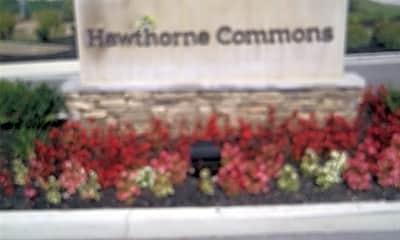 Hawthorne Commons 55 Living, 1