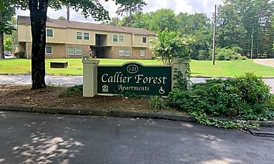Callier Forest Apartments, 1