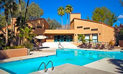 Pool, 5051 N Sabino Canyon Rd 2111, 0