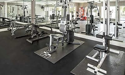 Fitness Weight Room, The Park at Via Velino, 2