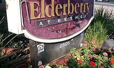 Elderberry At Bethel, 1