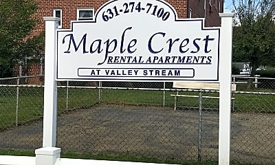 Maple Crest Valley Stream, 1