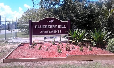 Blueberry Hill, 1