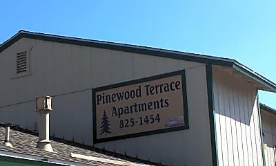 Pinewood Terrace, 1