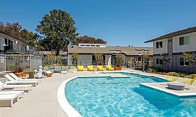 Pool, The Lagoons, 1