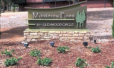 MONTEREY PINES (tf), 1