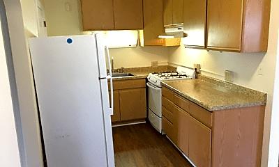 Kitchen, 219 Virginia St, 1