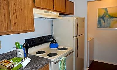 Kitchen, Walden Pond, 1