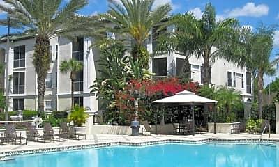 Pool, Allegro Palm, 1