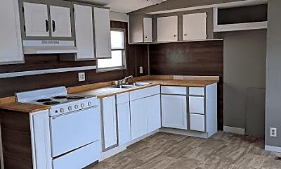Kitchen, 48 W Alisha Dr, 1