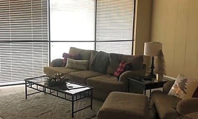 Living Room, 940 S National Ave, 1