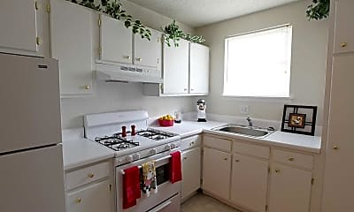 Kitchen, New Irving Heights, 1
