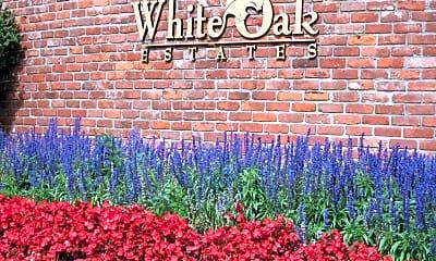White Oak, 2