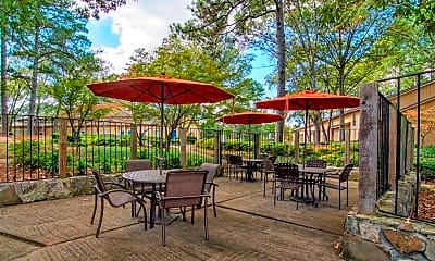Recreation Area, The Springs Townhomes, 0