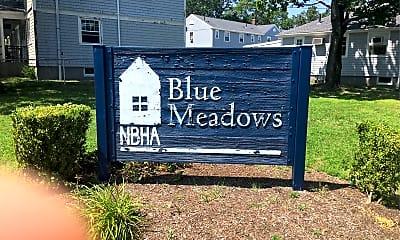 Blue Meadows, 1