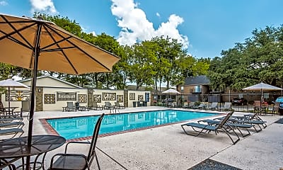 Pool, The Arts Apartments at Bluebonnet Place, 1