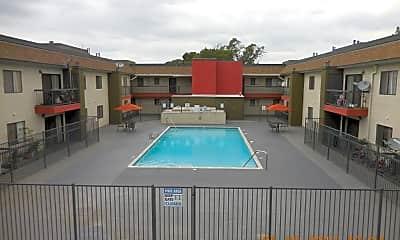Pool, 7817 Vineland Ave, 1