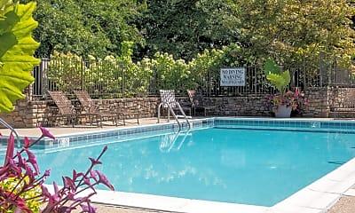 Pool, Lakepointe Luxury Apartments, 1