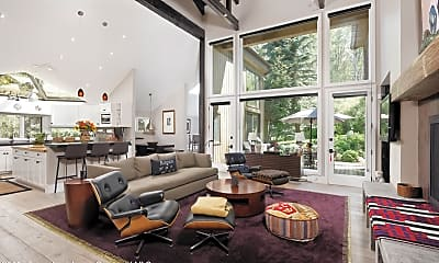 Living Room, 1145 Black Birch Dr, 0