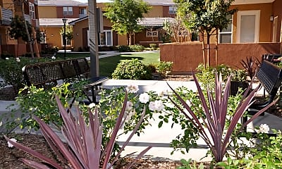 Courtyard, Luxury Living at Tyler, 0