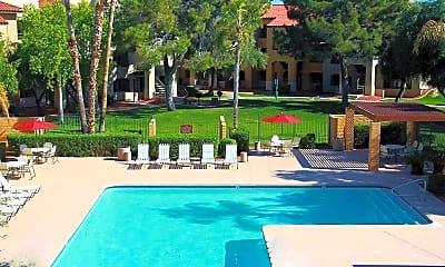 Pool, Olive Tree, 0